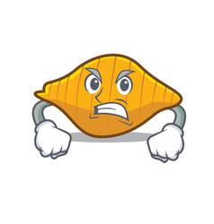 Angry conchiglie pasta mascot cartoon vector