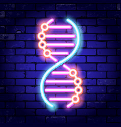 dna neon signboard vector image