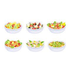 salad dishes bowl with fresh healthy vegetable vector image