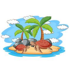 scene with sea turtles on island vector image