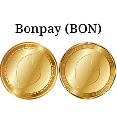 Set of physical golden coin bonpay bon vector