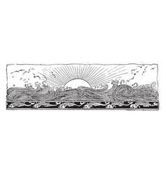Sun and ocean vintage vector