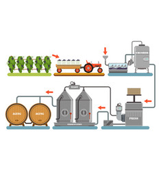 wine production process alcoholic beverages vector image