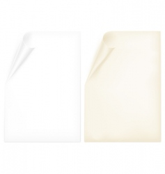 two paper pages vector image