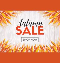 autumn sale shop now promo template vector image