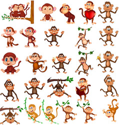cartoon happy monkey collection with different act vector image