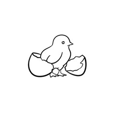 chick hand drawn sketch icon vector image