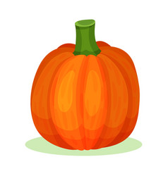 Flat icon of large pumpkin bright orange vector