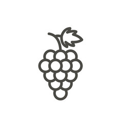 grape icon outline fruit line grape symb vector image