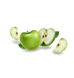 Green apples on a white background vector