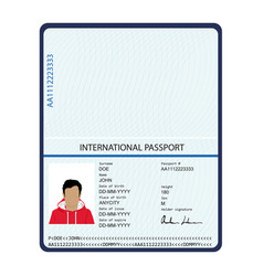 Passport identification document vector