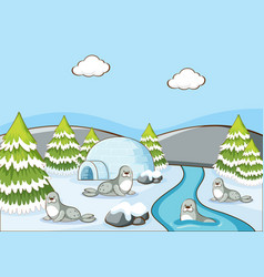 scene with seals and igloo river vector image