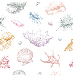 Seamless hand drawn seashells pattern backgrounds vector