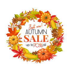 Seasonal autumn banner vector
