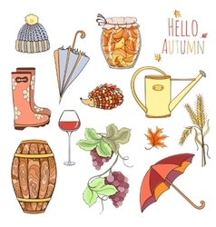 Set of autumn elements vector