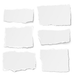 Set paper different shapes tears isolated vector