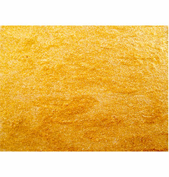 texture golden surface vector image