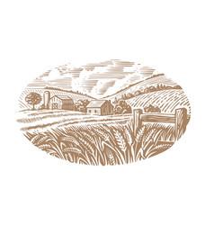 village on sunny day field wheat sketch farm vector image
