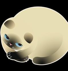 cat111 vector image vector image