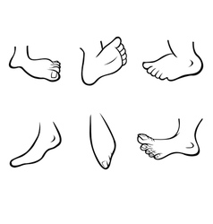 FEET collection outline vector image vector image