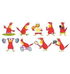 set of funny parrots sport vector image