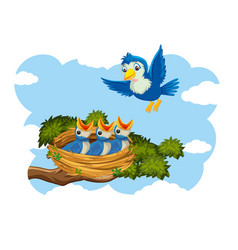 Chicks and its mother bird in nature vector