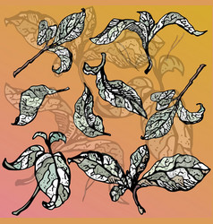 colorful set of green and grey leaves vector image