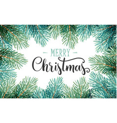 fir branches with handwriting lettering vector image