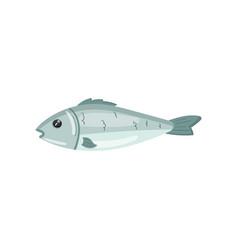 fresh sea fish seafood cartoon vector image