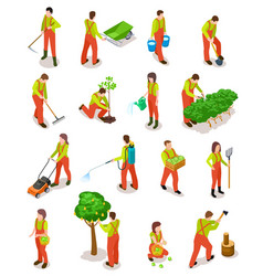 Isometric gardeners farmers work in garden vector