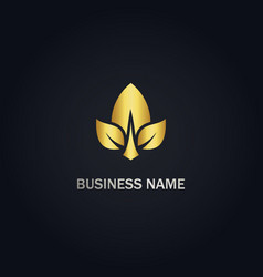 leaf nature seed gold logo vector image