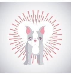Pet service design vector