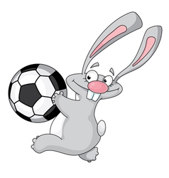 rabbit and ball vector image
