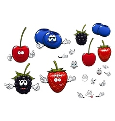 Strawberry blackberry cherry blueberry fruits vector image