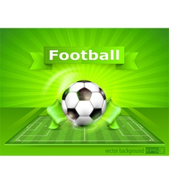 green playing field ball vector image