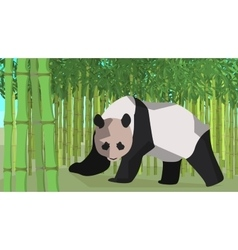 Panda in a bamboo grove animal nature vector image