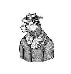 cheetah character guepard in coat fashionable vector image