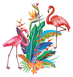 flamingoes with arrangement from tropical flowers vector image