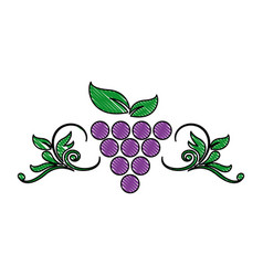 grape leaf wine fruit product emblem vector image