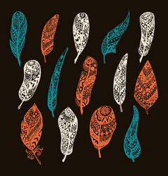 Set of feathers hand drawing with vector