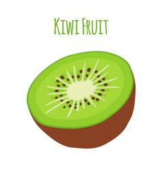 tropical fruitkiwi whole halfflat style vector image
