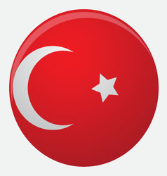 Turkey flag icon flat vector image
