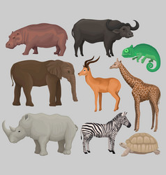 wild african animals set hippopotamus vector image