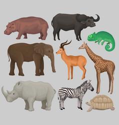 Wild african animals set hippopotamus vector