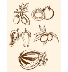 set of vintage vegetable icons vector image