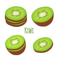tropical fruit exotic kiwi set flat style vector image vector image