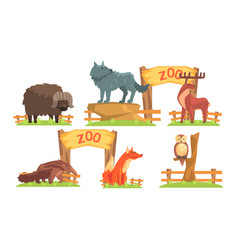 animals in zoo set bison wolf deer ant vector image