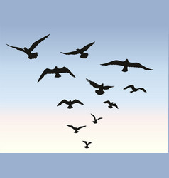 Bird flock flying over blue sky background animal vector