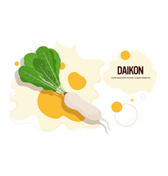 fresh daikon sticker tasty vegetable icon healthy vector image