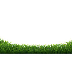 Grass frames set in isolated white background vector
